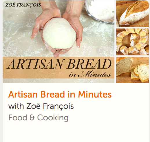 Artisan Bread in Minutes